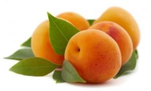 l-abricot-le-compagnon-de-l-ete_228519