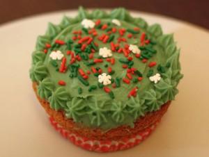 Cupcake Forêt de Sapin